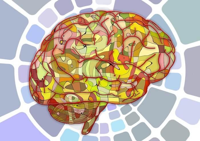 Cómo afecta la adicción al cerebro